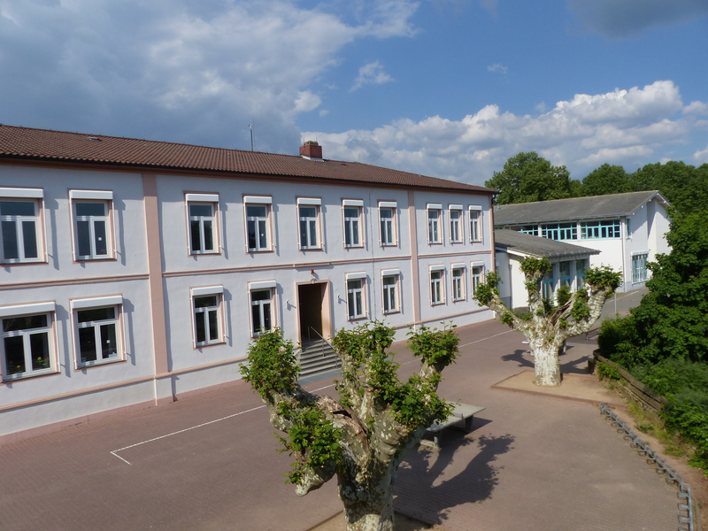 Weinbergschule